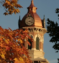 Top view of a clock tower with trees
